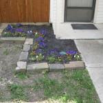 4/1/2010 Yard Scenes (19)