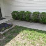 4/1/2010 Yard Scenes (16)