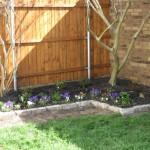 4/1/2010 Yard Scenes (15)