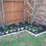 4/10/2010 Flowers and flower beds (19)