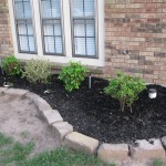 4/10/2010 Flowers and flower beds (15)