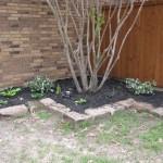 3/22/2011 Spring Garden Plans (14)