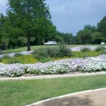 5/21/2011 Rose Gardens of Farmers Branch (28)
