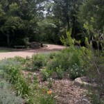 5/21/2011 Rose Gardens of Farmers Branch (27)