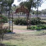 11/12/2011 AARS Test Garden (1)