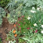 3/17/2012 March Arboretum (6)