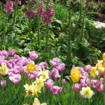 3/17/2012 March Arboretum (42)
