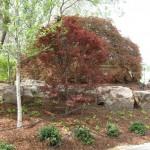 3/17/2012 March Arboretum (99)