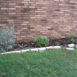 3/17/2012 March Flower Beds (17)