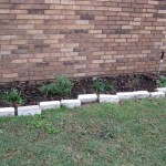 3/17/2012 March Flower Beds (18)