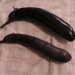 10/15/2012 Eggplant 2