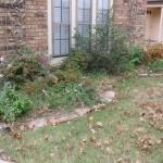 11/30/2012 November Garden Scenes (30)