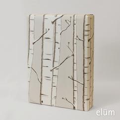 Birch - 10 Sheets