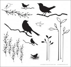 BIRDS & BRANCHES 2