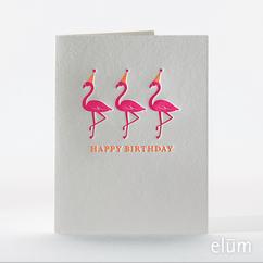 Festive Flamingos