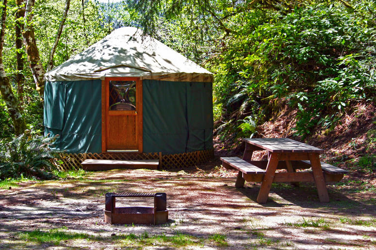 Yurt camping in the woods