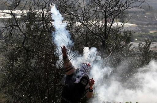 protestas, Palestina