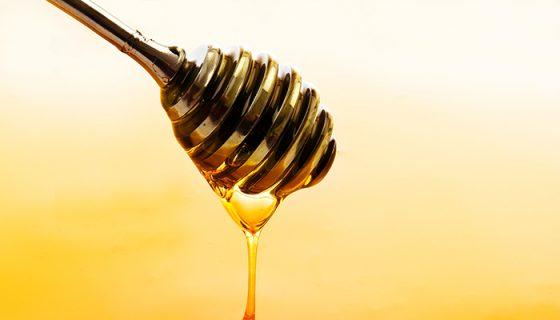 La miel no cura la gripe