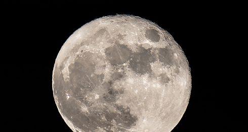 viaje a la Luna, SpaceX