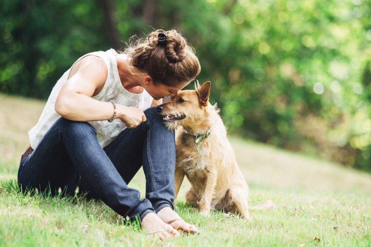 Las 8 preguntas que debes hacerte antes de adoptar una mascota