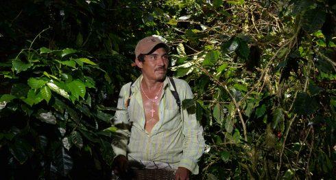 cafés especiales, café, cafeteros, Nicaragua, café de Nicaragua