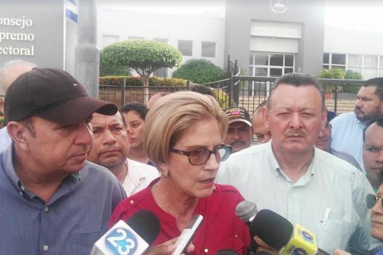 El pasado diciembre, cuando Kitty Monterrey solicitó la personería jurídica al CSE.