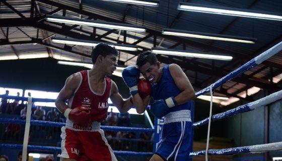 La Selección Nacional de Boxeo tuvo dos fogueos recientes con Guatemala y Costa Rica. Foto: Carlos Valle