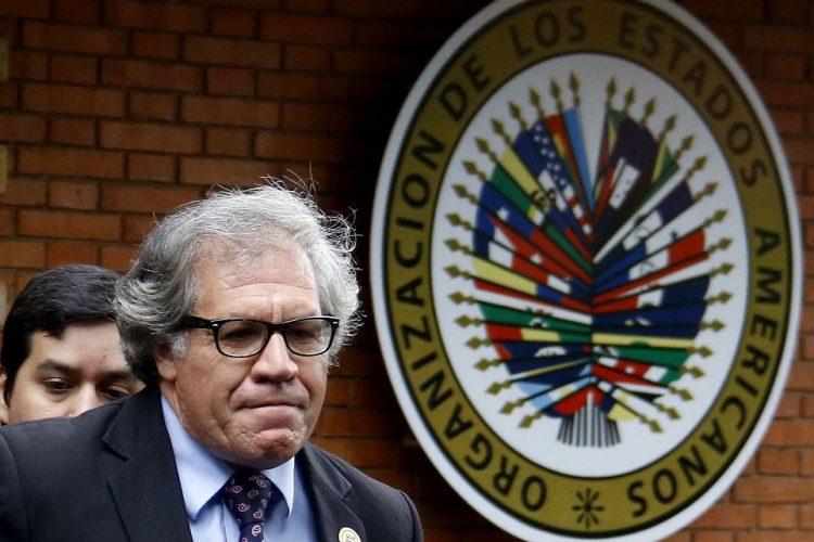 OEA, Luis Almagro