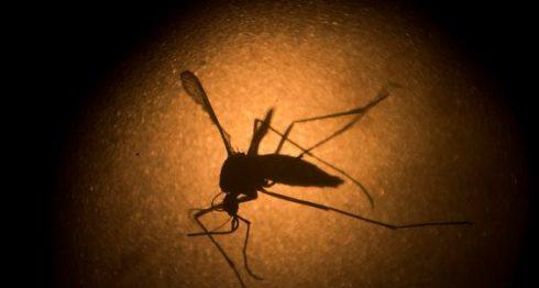 malaria, Nicaragua, lluvias