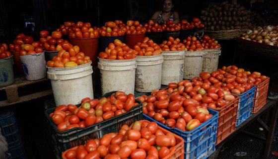 vegetales, precios, productos de la canasta básica, canasta básica, tomate, tomates