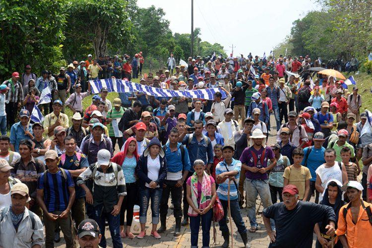 Movimiento campesino, Ley 840, anticanal, PLC