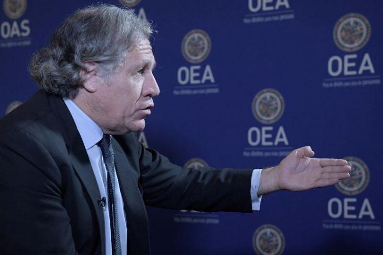 Secretario General de la OEA, Luis Almagro. LA PRENSA/EFE