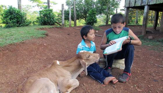 Caribe Norte de Nicaragua, educación en Nicaragua, lectura