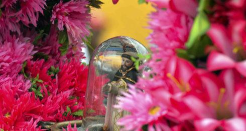 La historia de Santo Domingo de Guzmán se remonta al año 1855, cuando fue encontrada la pequeña imagen del santo por un leñador de apellido en la corteza de un árbol en Las Sierritas de Managua. LA PRENSA / Jader Flores.