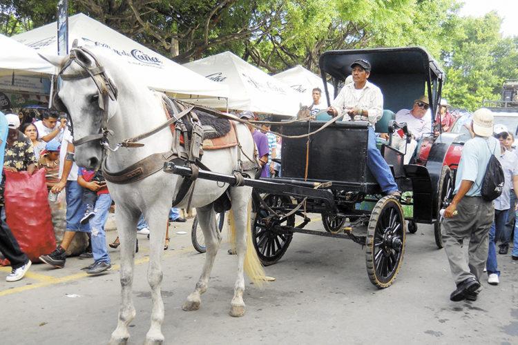 Las hípicas de Granada son parte de las actividades coloridas de las fiestas patronales en la ciudad colonial. laprensa/ archivo.
