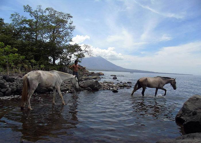 La foto del lector de esta semana es de Claudia Pineda. Le invitamos a enviarnos sus mejores fotos al correo: domingo@laprensa.com.ni