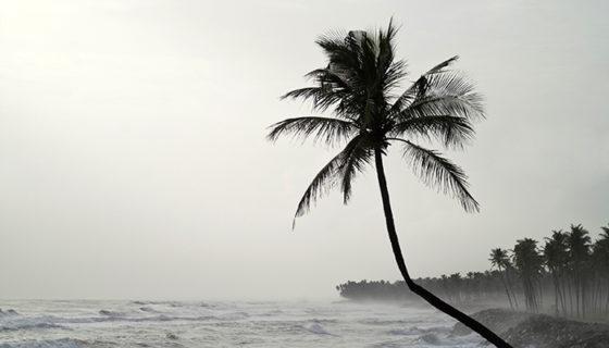 Una de las razones de por qué los huracanes tienen nombres para que sea más fácil divulgar la información.