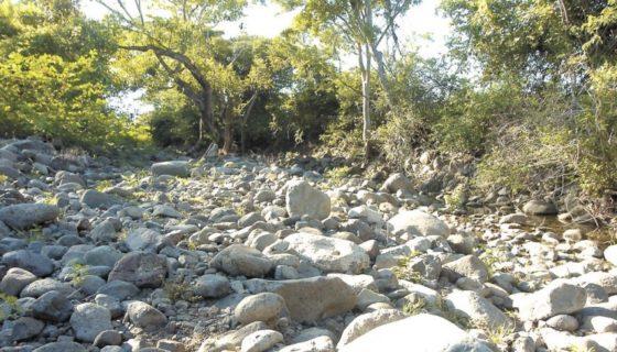 ambiente, acuerdo de paris, cambio climático, Nicaragua