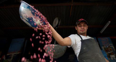 frijol de Nicaragua, frijol, nicaragua, precio del frijol, precio de los frijoles