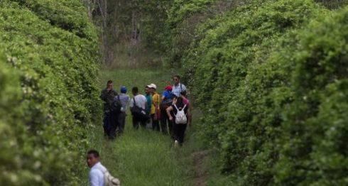 El TPS fue habilitado para los nicaragüenses después del huracán Mitch. LA PRENSA/ ARCHIVO