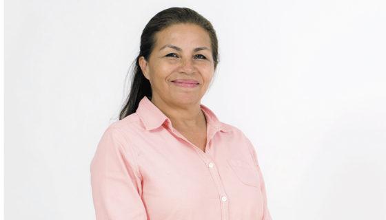 Panorama Electoral, Haydée Castillo, votaciones municipales. sistema electoral, fallido