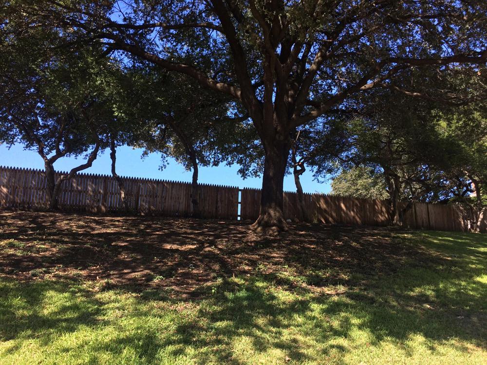 La infame valla de madera donde algunos dicen que se escondía un posible segundo asesino de Kennedy, en Dealy Plaza. LA PRENSA / Fabrice Le Lous