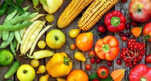 Cultivos, Vegetales, Semillas, Transgénicos, Alimentación