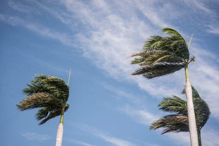 fuertes vientos, frente frío, frentes fríos, Nicaragua