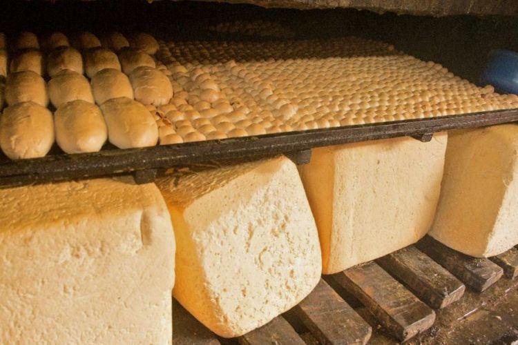 Entre 70 y 80 córdobas se cotiza la libra de queso en el mercado de Ocotal. LA PRENSA/ URIEL MOLINA