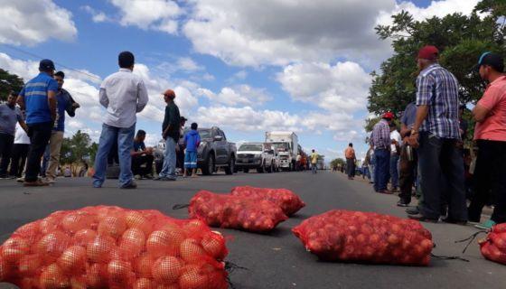 productores de cebolla, cebolleros, productores de cebolla de Nicaragua