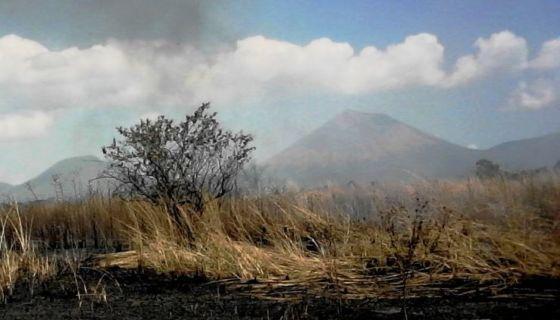 incendios forestales en Chinandega, incendios forestales, Nicaragua