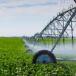 """Nicaragua está lejos de """"bañar"""" todas sus plantaciones con riego"""