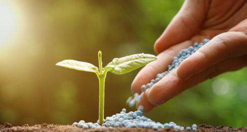 Agropecuario 2018, productores, fertilizantes, Agroalfa