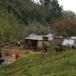 Sujetos amordazaron y torturaron a mujeres antes de quemarlas en Jalapa